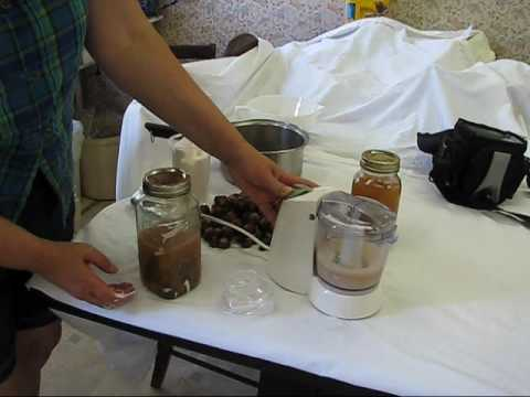 Soapnuts Recipe 2 Foam Cleaner