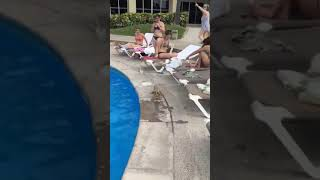 Iguanas Fight by Pool and Jump Into Water Scaring Swimmers - 1026737