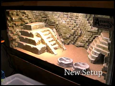 Aztec Mayan Temple Lizard Tank Diy Preview Youtube