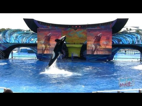 """One Ocean"" at SeaWorld Orlando - Shamu show premiere on Earth Day, April 22, 2011"