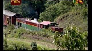 Sri Lanka Rail road Udarata Manike on Rupavahini Nanuoya to Pattipola