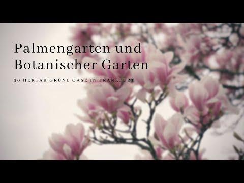Palmengarten Und Botanischer Garten  - 30 Hektar Grüne Oase In Frankfurt