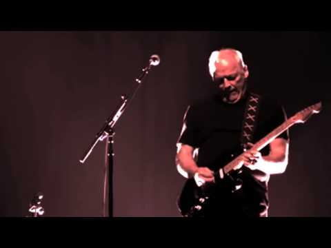 Pink Floyd - Comfortably Numb -  Roger Waters and David Gilmour Music Videos
