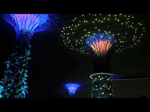 """Gardens by the Bay Light Show to """"Circle of Life"""" in Singapore"""