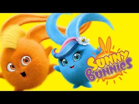 Cartoons For Children | Sunny Bunnies -