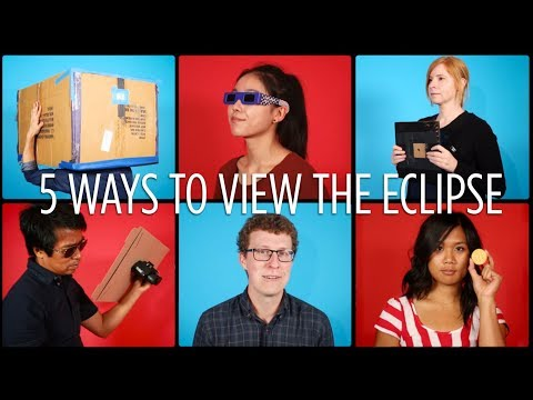 5 Safe Ways To View The Eclipse | NPR's SKUNK BEAR