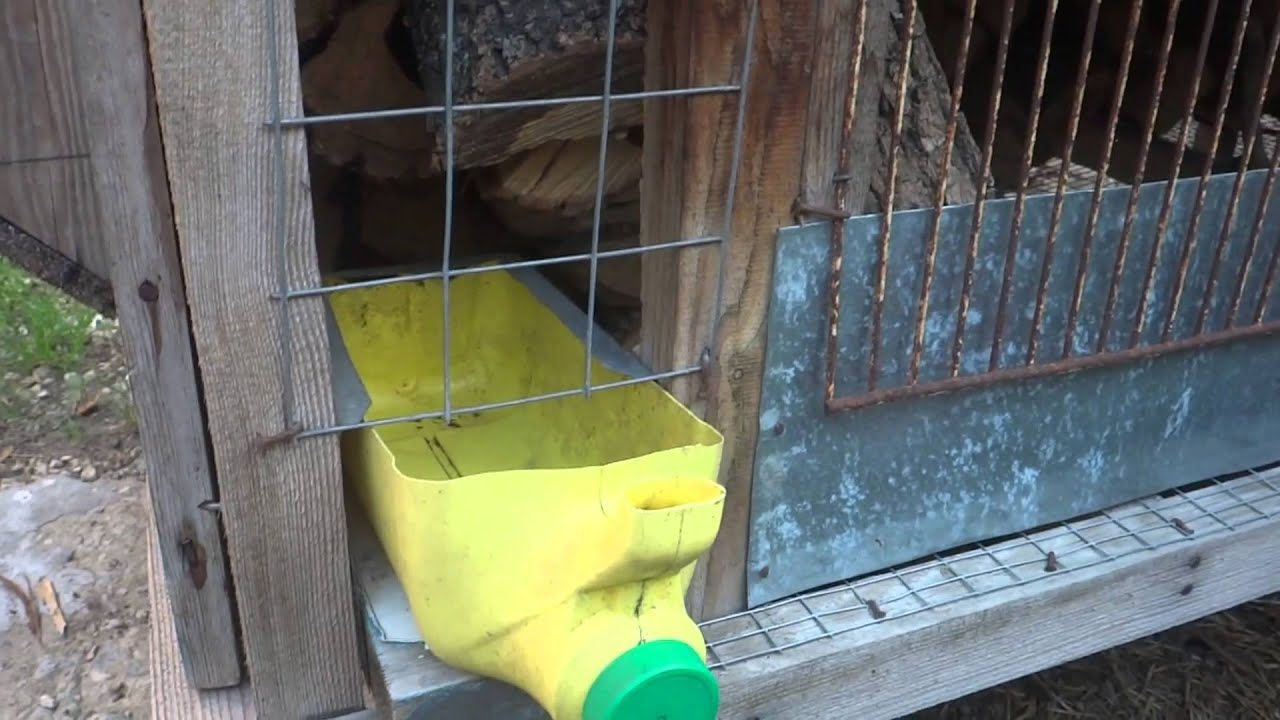 Фото поилок для кроликов своими руками из