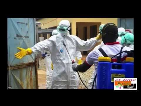 Ebola outbreak: Health team 'found dead' in Guinea