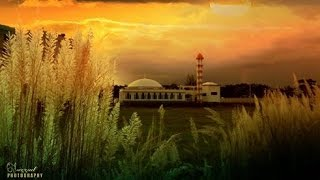 All photos of pabna university of science and technology    YouTube