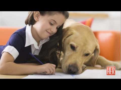 Can A Dog Be Your Child's Biggest Defense Against Asthma? - HER Week In Health