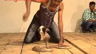 ambuli abu's snake dance