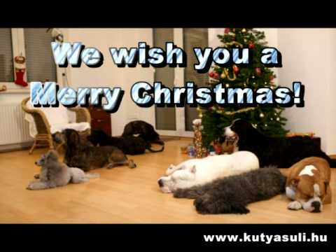 A doggy Christmas surprise - Karcsonyi kutys meglepets