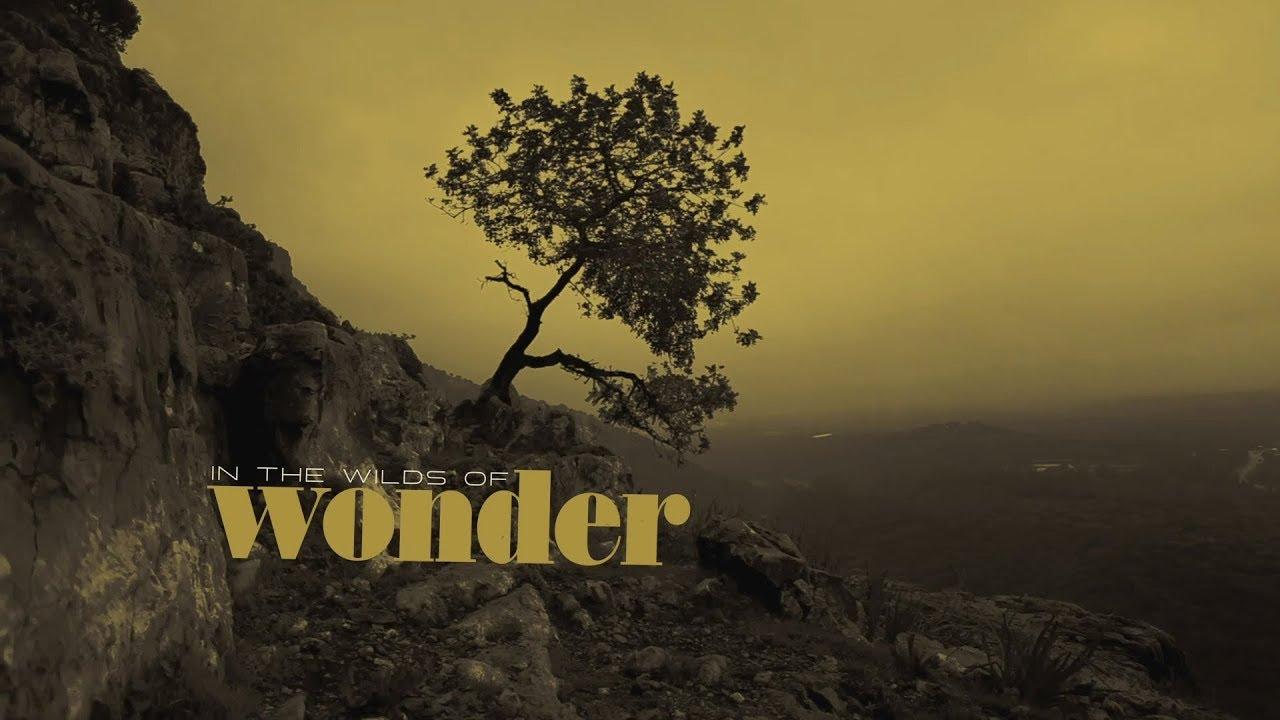 "Sonny Landreth - ""The Wilds Of Wonder""のOfficial Lyric Videoを公開 新譜「Blacktop Run」2020年2月21日発売予定 thm Music info Clip"