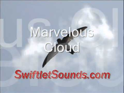 Swiftlet Sound - Marvelous Cloud External Sound video