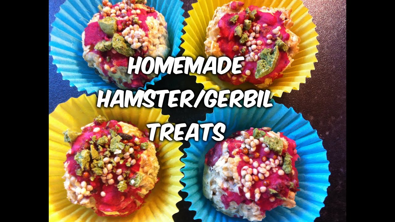 Hamster Treats Diy Treats For Hamsters And