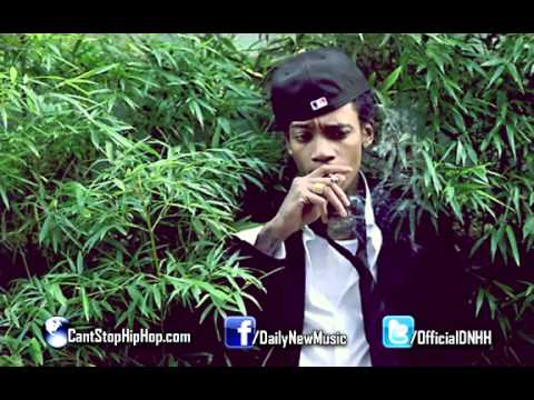 Wiz Khalifa - Started From The Bottom (Remix)