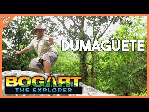Bogart The Explorer: DUMAGUETE