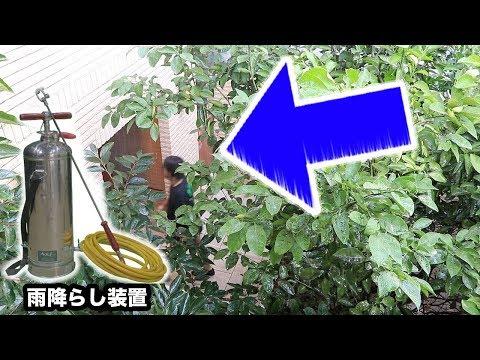 映画で使われている「雨降らし機」使えば人の天気錯覚させる説ww