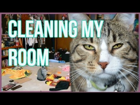 CLEANING MY ROOM! (Time Lapse)