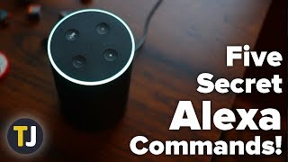 The Top Five Alexa Commands You Might Not Know!