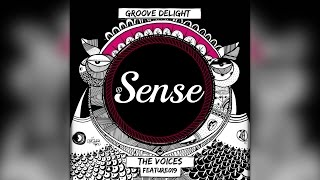 Baixar - Groove Delight The Voices Feature019 Grátis