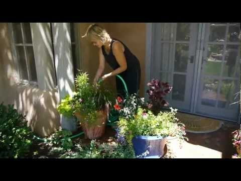 Four Season Garden Design landscaping Santa Fe New Mexico