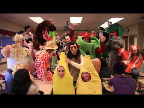 Harlem Shake Wilson High School- Period 8 Health Class