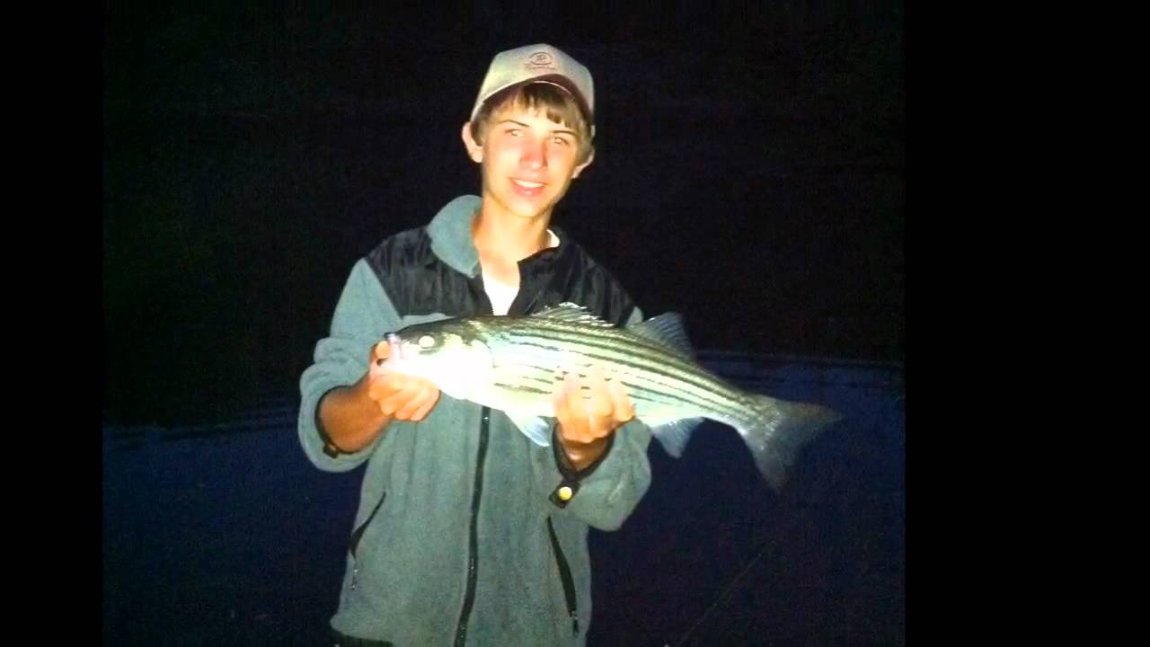 Fishing the lower illinois river in oklahoma striped bass for Buy illinois fishing license online