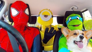 Superheroes Surprise Happy Dog With Dancing Car Ride