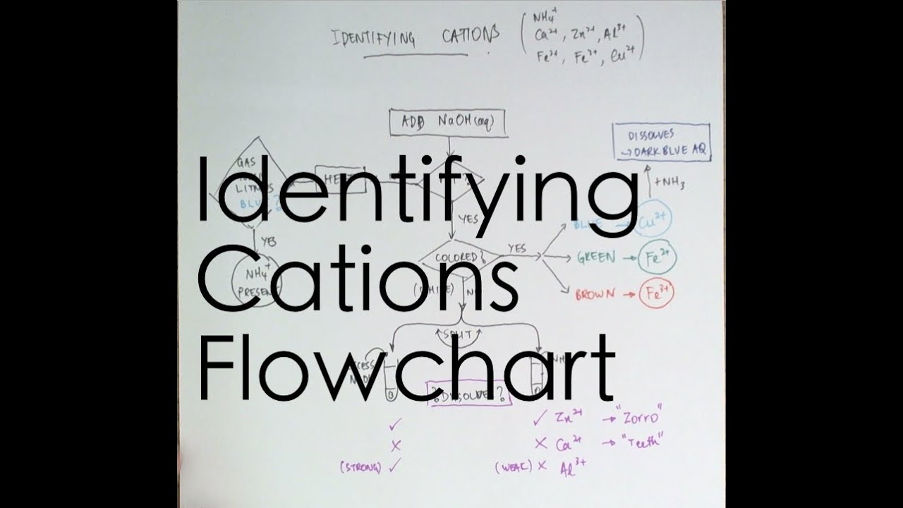 flowchart for identifying cations youtube