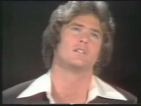 Before David Hasselhoff was famous