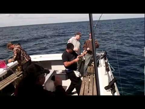 Shark Fishing - Lunenburg Nova Scotia 2012 (1)