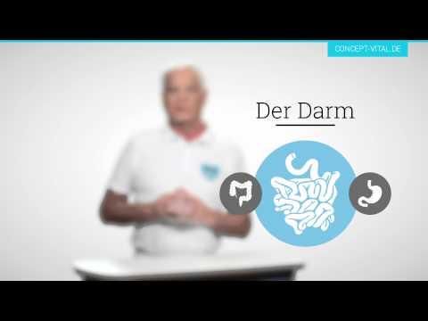 Folge #1: Die 4 Säulen Der Gesundheit - Dr. Med. Jean-Bernard Delbé