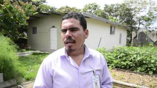 Huertos orgánicos beneficia a las familias en Guayaquil