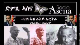 Voice of Assenna: Reflecting on the Broken Promises of the Eritrean Independence