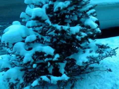 chicago, fotos del invierno 2012 # 2