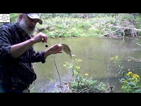 Fishing The Pools For Roanoke Bass