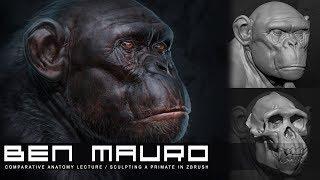 Ben Mauro - Sculpting Primates in ZBrush