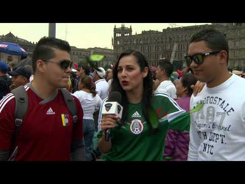 COLOR MEXICO vs BRASIL / MUNDIAL2014