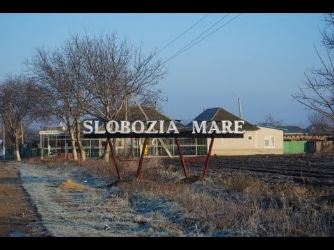Slobozia Mare Chisinau Sarba de la Slobozia Mare