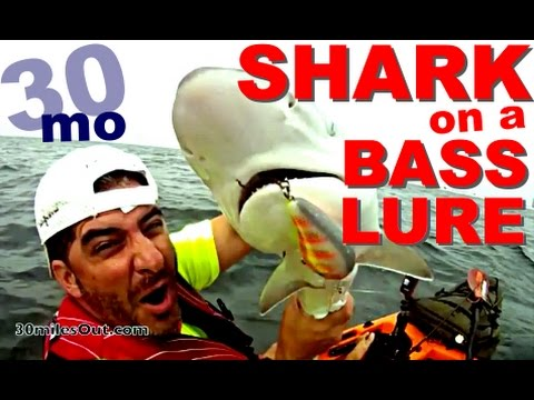 30milesOut.com KAYAK SHARK FISHING ,NAVARRE BEACH FLORIDA kayak fishing how to