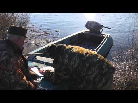 рыбалка в апреле в липецкой области видео