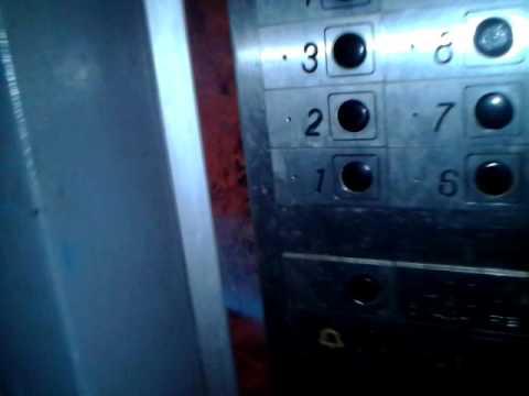 гуж говори, лифт в другой мир игра вся жизнь