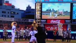 プロ野球 命がけ?始球式 Daredevil The ceremonial first pitch Japan Professional Baseball