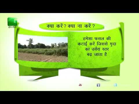 Green Gyan- Kya Karein Kya Na Karein- Fact 6 Green TV