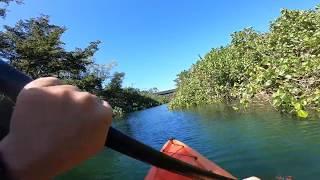 Kayak Río Guajataca 2019 Cyber Puerto Rico Quebradillas