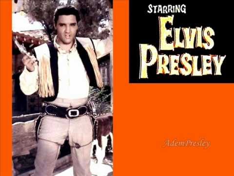Elvis Presley Night Life (take 3) AY0b picture