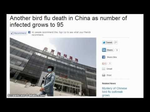 Half Of the 95 China H7N9 Bird Flu Infections Had NO Contact with Poultry!