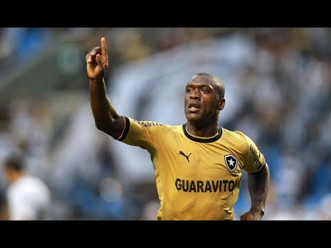 Clarence Seedorf 2013 ● Mr. Football ● Botafogo [HD]