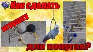 Как сделать кольцо для попугая своими руками